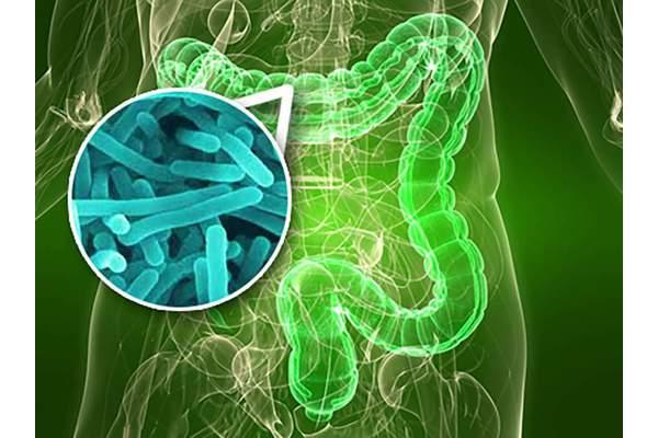 Непрошеные гости: влияние усиленного бактериального роста в тонком кишечнике на состояние питания.