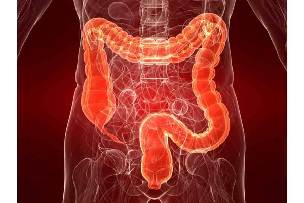 Воспалительные заболевания кишечника у детей (часть 1)