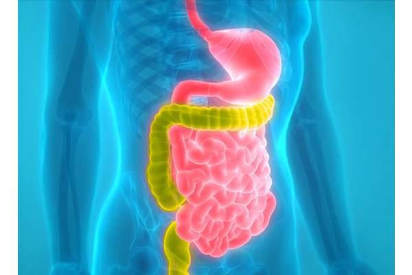 Дисбактериоз – синдром раздраженного кишечника: эссе-анализ проблемы.