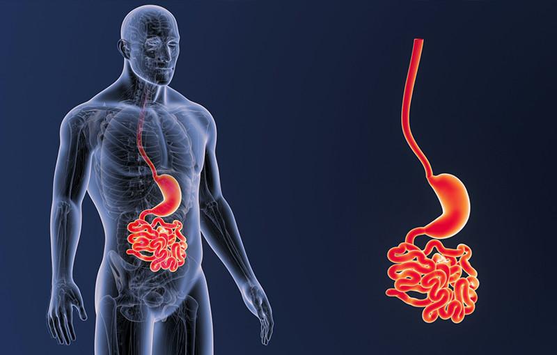 Большие симптомы в гастроэнтерологии